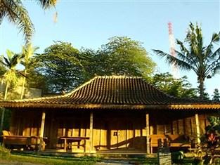 Padi City Resort, www.hoteldimalangbatu.wordpress.com, 085 755 059 965